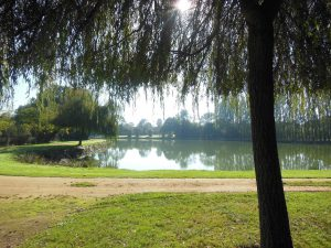 Sentier proche étang Gennes sur Glaize